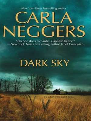 Cover image for Dark Sky.